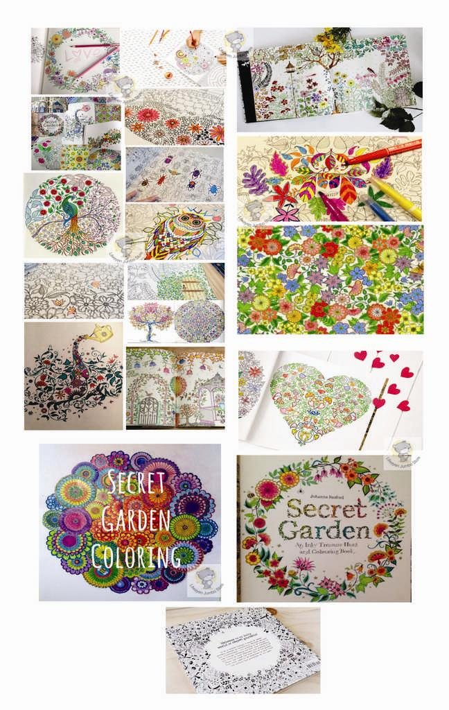 Secret Garden Adult Coloring Book FREE 12 COLOR PENCIL
