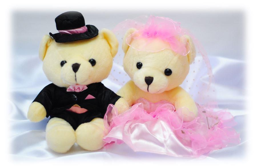 Soft Toy Teddy Bear Wedding Couple Pink Anniversary Gift