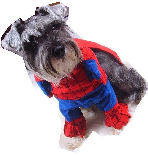 Spiderman Pet Clothes