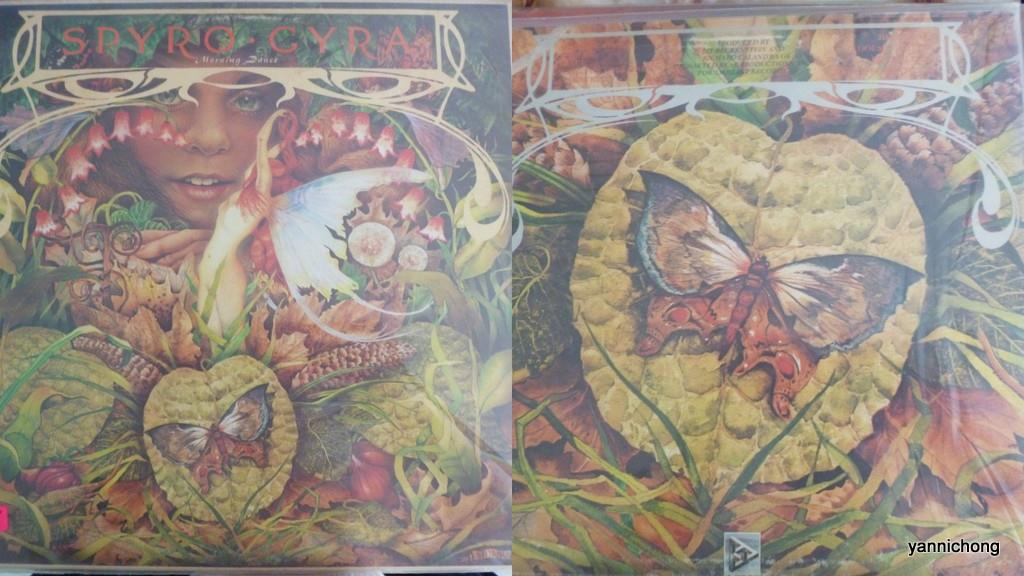 SPYRO GYRA  MORNING DANCE VINYL RECORD