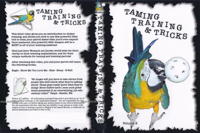 Step-By-Step Instructions on Parrot Taming, Training and Tricks in DVD