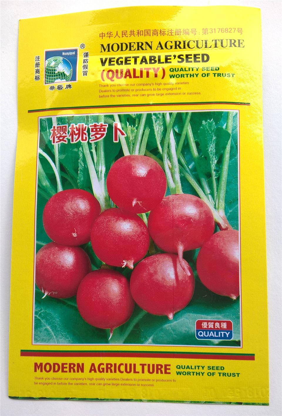 Sugar Beet Vegetable Seed 10g