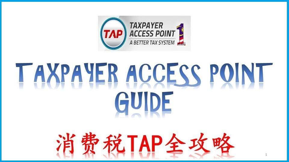 Taxpayer Access Point Guide