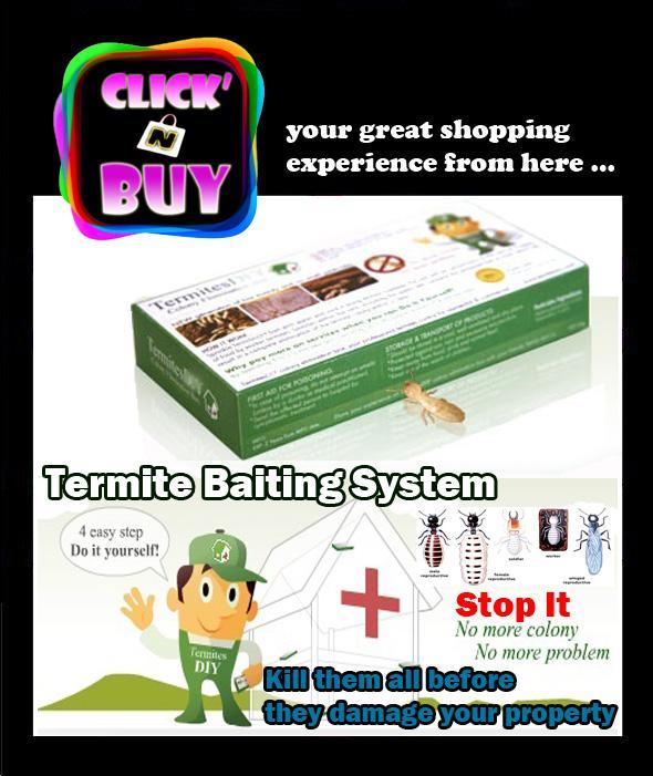 Termite Baiting System Diy Kill Termi End 4 7 2017 2 15 Pm