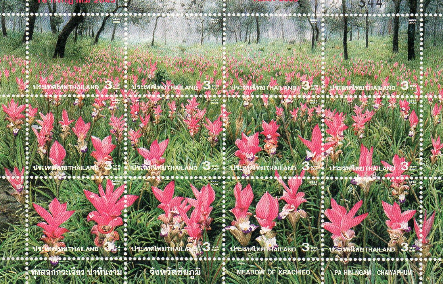Thai Meadow Of Krachieo 2000 Stamp