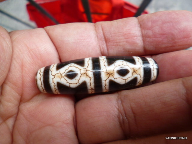 TIBETAN BLACK AGATE 6 DRAGON EYE DZI BEAD