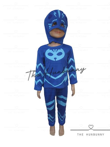 Toddler Boys PJ Masks Catboy Halloween Party Costume