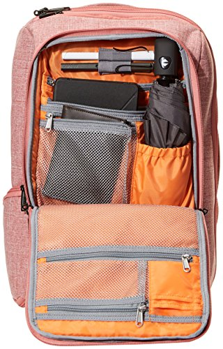 From USA AmazonBasics Slim Carry On Travel Backpack