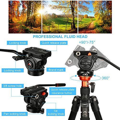 From USA Fluid Head Tripod, COMAN Video Tripod Aluminium Alloy 70.8 inch for C