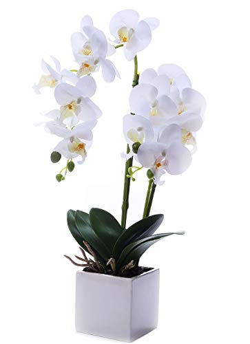 (FROM USA) GXLMII Artificial Flower Bonsai with Vase, Large Vivid Orchid Plant