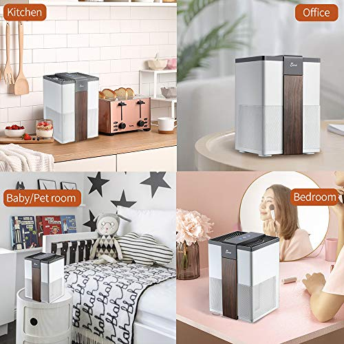 From USA Jese Air Purifier,3 Stage Filtration System with True HEPA Air Filter