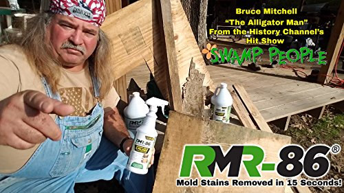 From USA RMR-86 Instant Mold and Mildew Stain Remover Spray - Scrub Free Formu