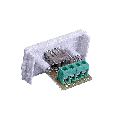 Wall Faceplate With USB Outer Terminal Block
