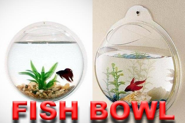 Wall Mount Fish Bowl Hanging Round Bubble Tank Aquarium( CLEAR STOCK)