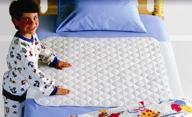 Waterproof Bed Sheet Bedsheet Protector Toilet Training Menstrual
