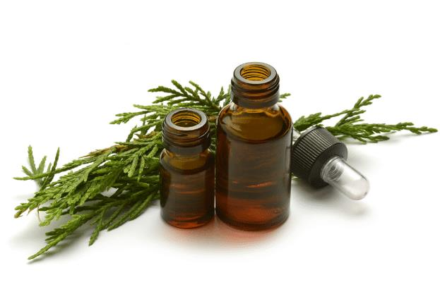 White Cypress Essential Oil - Austral (end 7/9/2021 1:15 PM)