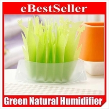 GREEN Evaporating Transforming Humidifier Non-electric Eco-friendly