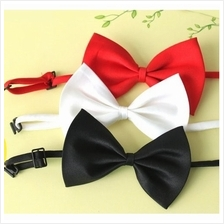 04186 Korea Gentleman Silk Bow Tie