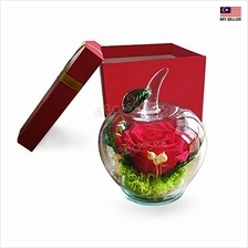 Valentine''s Day Gift Eternal Life Flower Gift Box Cover Red Rose Glass