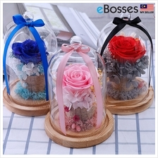 Gift Flower Glass Boxes Of Rose, Blue Pink Red