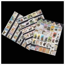 A Collection Of Cat Stamp 100v Different Countries No Repetition