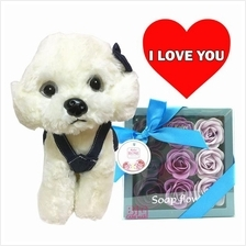 Mother's Day Gift Rose Flower in Box + Toy Dog Poodle