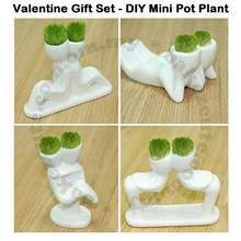 Love Gift Set-Ecoey DIY X-Lover Mini Desktop Plant