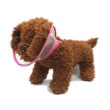 E-Collar for Cats & Puppies & Small Breed Dogs S Size