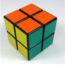 ShengShou Magic Cube 2x2x2 Intelligence Toys Magic Cube