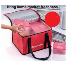 Tupperware Cooler Bag