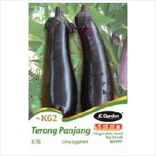 K62 LONG EGGPLANT VEGETABLE SEED BIJI BENIH TERONG PANJANG