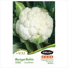 V32 CAULI FLOWER VEGETABLE BIJI BENIH BUNGA KOBIS