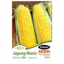 K53 SWEET CORN VEGETABLE  SEED BIJI BENIH JAGUNG MANIS