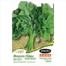 V07 OKRA / LADY FINGER VEGETABLE SEED BIJI BENIH BAYAM HIJIAU