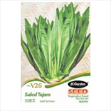 V26 LEAF LETTUCE VEGETABLE SEED BIJI BENIH SALAD TAJAM