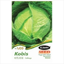 V09 CABBAGE VEGETABLE SEED BIJI BENIH KOBIS