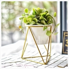 Creative Iron Stand Ceramic Vase Flower Pot