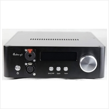 Audio-GD NFB-28.28 Balanced DAC/Preamp/Headphone amp (ES9028PRO)