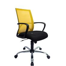 Budget Low Back Mesh Home & Office Chairs (Netting Chairs)