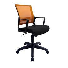 Low Back Mesh Home & Office Chair (Netting Chair)