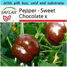 SAFLAX Gift Set - Pepper - Sweet Chocolate x - Capsicum - 10 seeds
