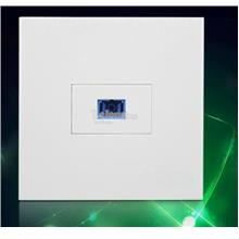 SC Optical Fiber Panel Face Plate (S549)