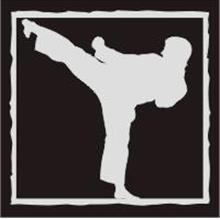 1 pc ebook - Japanese Fighting Arts - Karate, Kendo, Judo, Akido