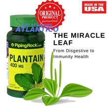 Piping Rock, Plantain (Leaf) Plantago Major 400 mg 60 Capsules