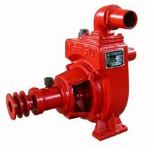 Self Priming Water Pump  NS50 (2'' x 2'')