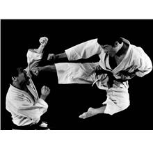 EBOOK 27 KATAS SHOTOKAN KARATE