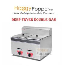Commercial fully stainless steel deep fryer 6L double gas