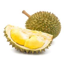 Pre-book Golden Phoenix Durian (Testing - don't buy)金凤榴莲