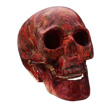 Halloween Human Skeleton Head Horror Scary Gothic Skull Prop Home Part