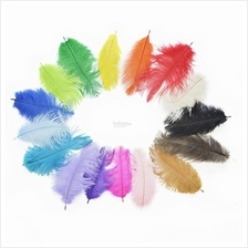 Feathers for balloon fillings table deco craft 10gram apprx 130pcs